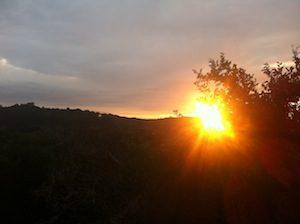 a nice walk at sunset