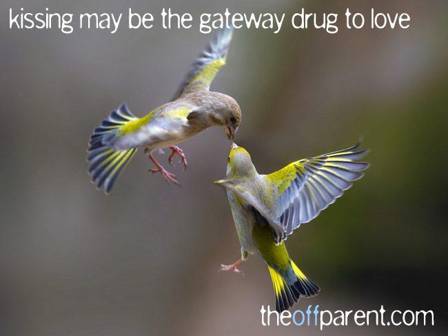kissing, the gateway drug