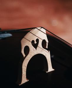 bridge of a cello