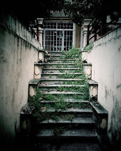 OFF-overgrown-stairs