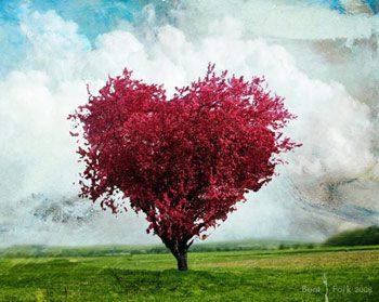 off-hearttree